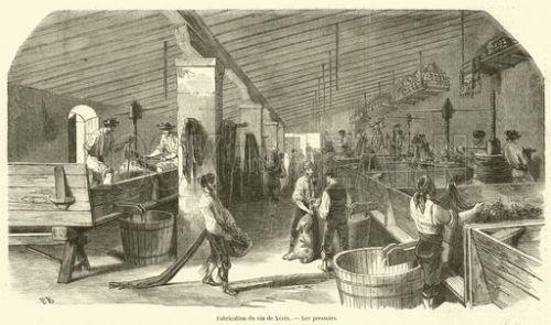 Fabrication du vin de Xeres, Les pressoirs