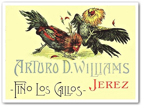 Arturo_D_Williams_Jerez